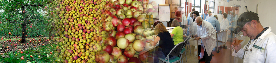 Cider & Perry production courses